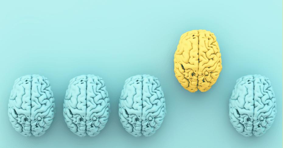 İDİS İşitme, Alzheimer farkındalık çalışmalarını destekliyor