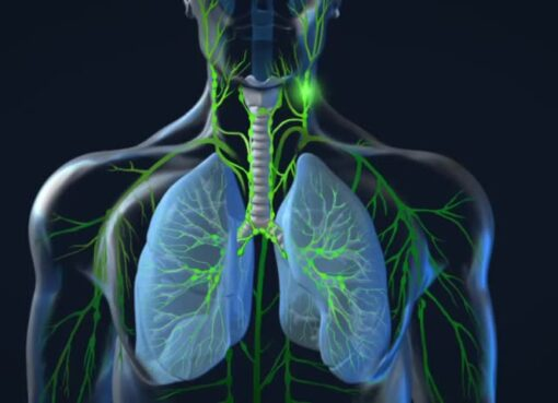 """Zatürre tüm dünyada ve ülkemizde en sık görülen ve en fazla ölüme neden olan hastalıklar arasındadır. Akciğer dokusunun iltihaplanması sonucu, bakteriler başta olmak üzere çeşitli mikroorganizmalar yüzünden oluşan bu rahatsızlık, her yıl ülkemizde 12 bin civarı kişinin yaşamını kaybetmesine neden olur. Bağışıklık sistemi güçlü olursa zatürrenin ayakta basitçe geçirilebileceğini söyleyen Prof. Dr. Turgay Çelikel; """"Hastaneye ve yoğun bakıma yatışı gerektiren ve ağır seyreden zatürre vakaları vardır. Kanda oksijen seviyesinde düşüklüğe, karbondioksit seviyesinde yükselmeye ve solunum yetmezliğine yol açan bu tip zatürreler, bağışıklığı azalmış kişilerde çok ciddi durumlara neden olabilir. Bazı hastalarda tedavi süreci iki ayı bile bulabilir. Bu sürede yakın doktor kontrolü şarttır"""" uyarısında bulundu."""