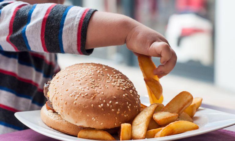 Diyabet, insülin salgılayan beta hücrelerinin sayısında ve fonksiyonunda yaşanan azalma sonucunda yaşanan kan şekeri yüksekliğidir.